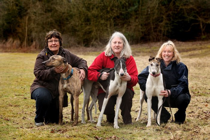 Volunteers Kath Armitage, Karen Fraser and Alison Waggot with greyhounds