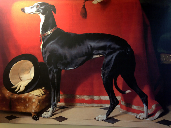 """Eos"", Prince Albert's Greyhound. A copy of this painting hangs in the Trust's Head Office."